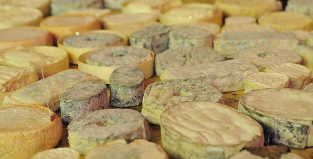 Käsespezialist aus dem Elsass- Bernard Antony | Feinschmecker