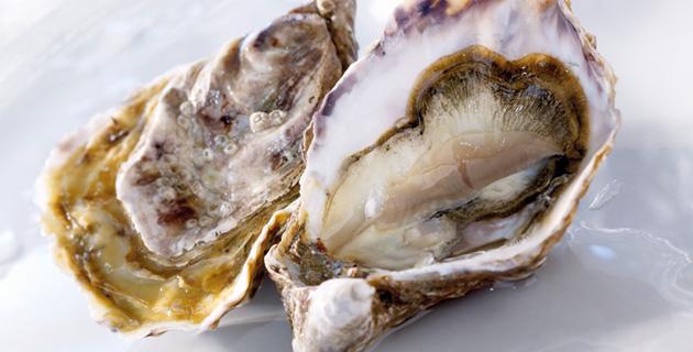 Austern – Ausdruck gehobener Gourmetfreuden