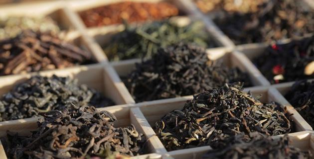 Die Welt des Tees – Entdecken, erleben, geniessen