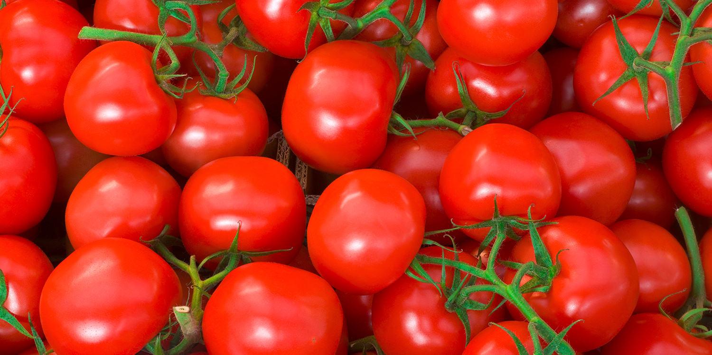 Saisongemüse im Sommer – Zeit für frische Tomaten