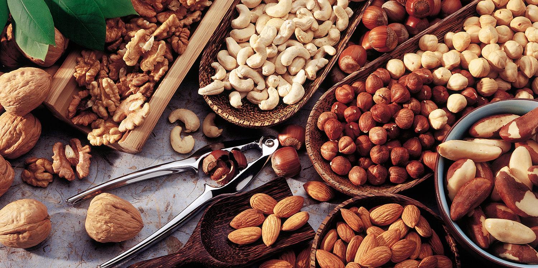 Nüsse – Nährstoffbomben im Überblick