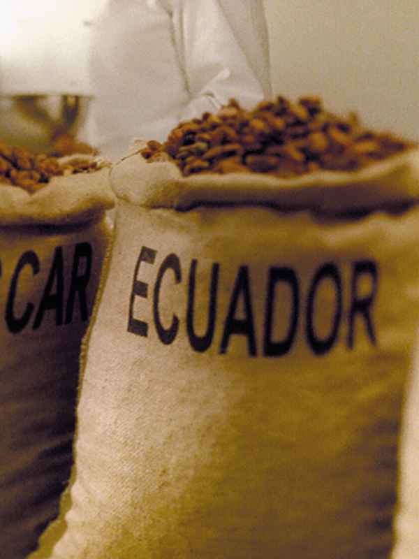 Lindt bezieht seinen Kakao nur aus den besten Herkunftsregionen der Welt