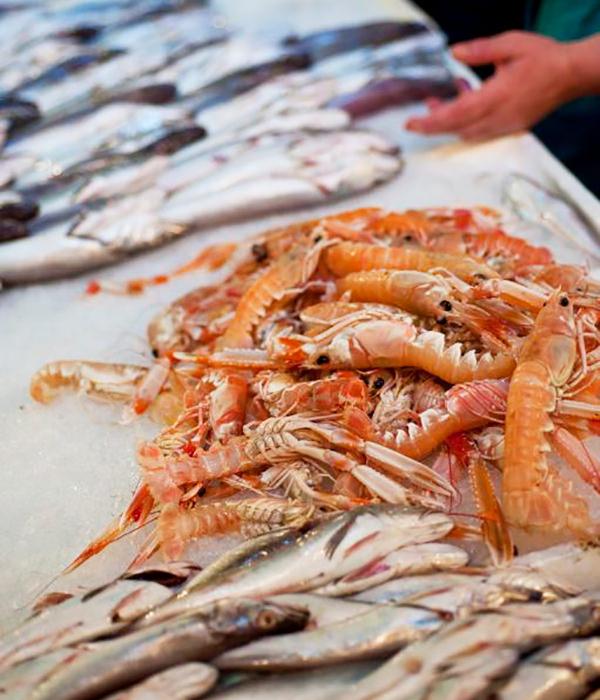 Frische Meeresfrüchte aus Kvarner
