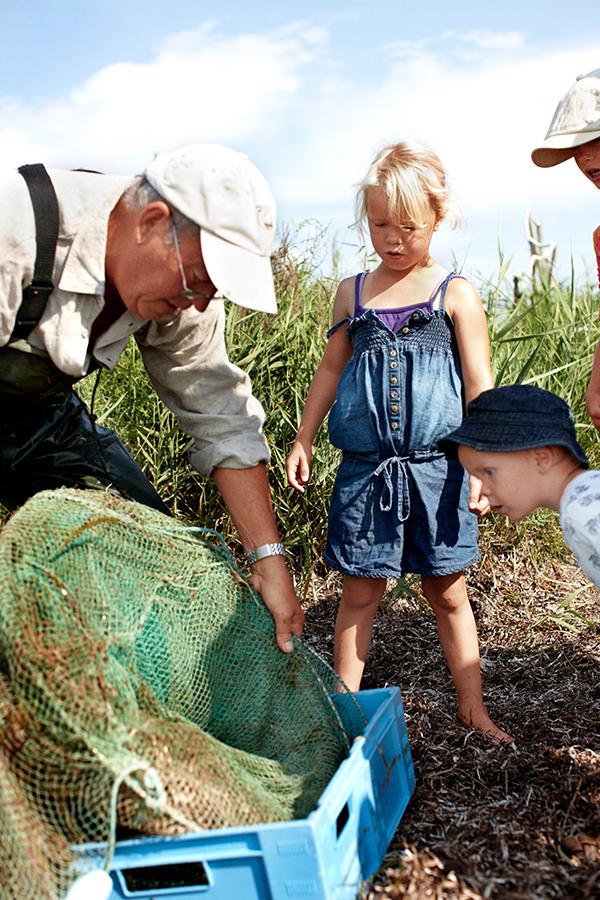 Frisch gefangene Meeresfrüchte in Dänemark