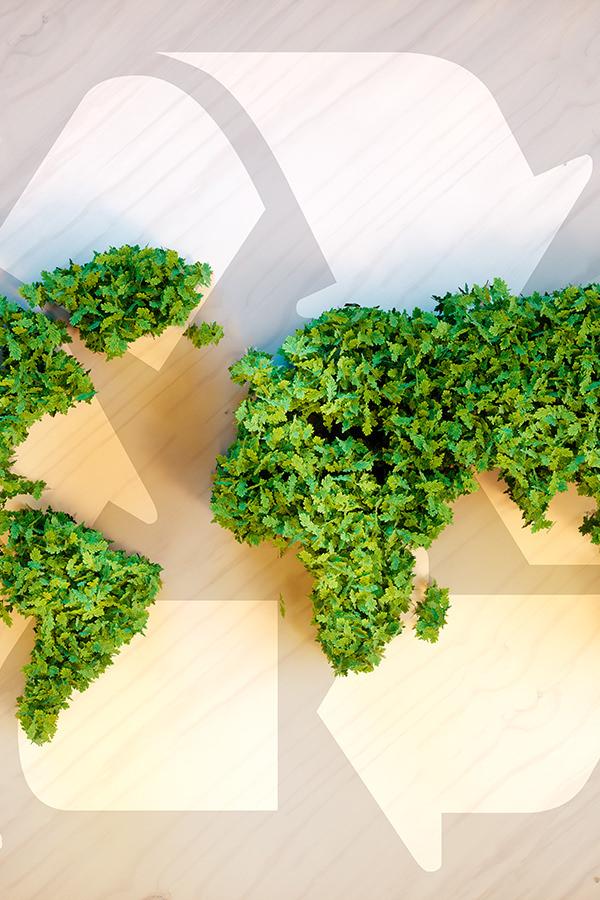 Nachhaltigkeit bei Lebensmitteln ist weltweit ein Thema