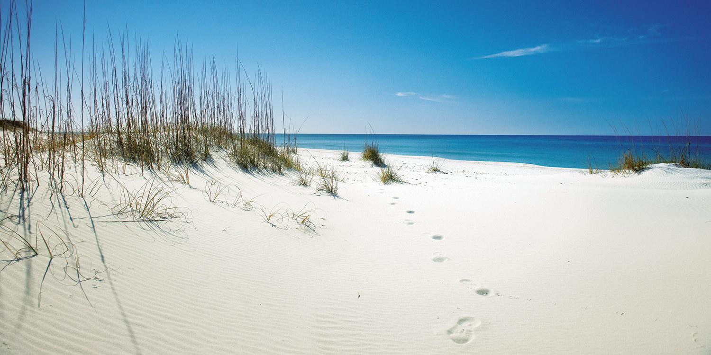 Florida – The Sunshine Life im Sunshine State