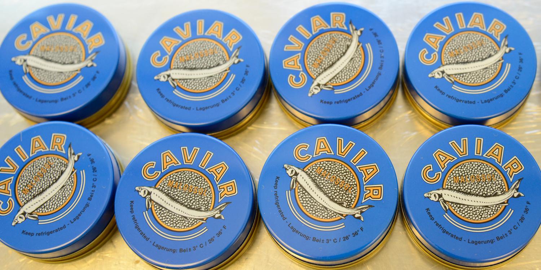 Walter Grüll – Passion und Zeit für Kaviar